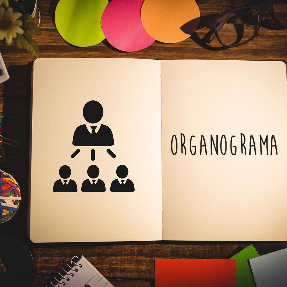 Como construir um organograma para sua empresa
